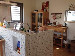ウィルホーム物件レポート CRTハウジング小山総合住宅展示場