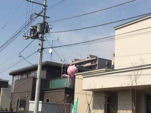 北海道マイホームセンター札幌森林公園駅前会場