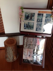 日本ハウスホールディングス物件レポート ABCハウジング加古川住宅公園